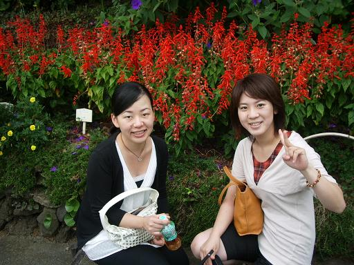 長野にもたくさん咲いてた.JPG